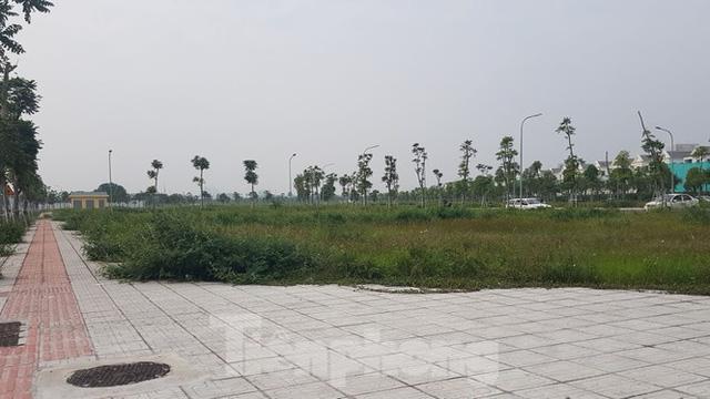 đất đấu giá tại Long Biên