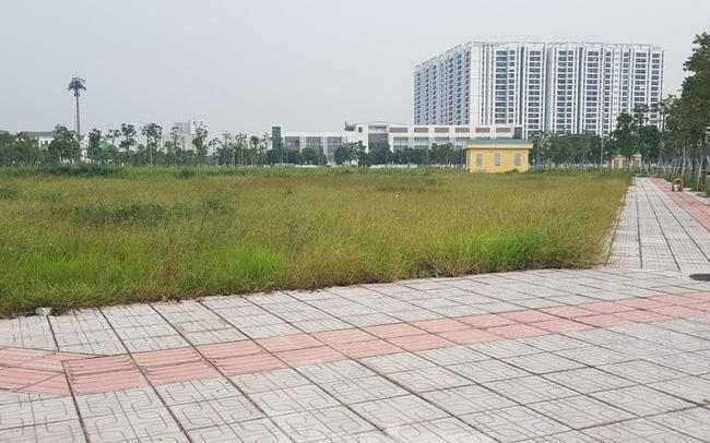đấu giá quyền sử dụng đất Hà Nội