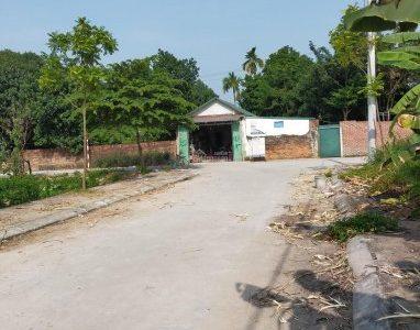 Bán đất đấu giá xã Đồng Tháp